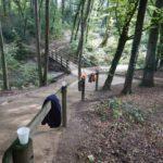 Chambésy: restauration d'un chemin pédestre et autres travaux
