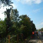 Genthod: travaux aux bains de Saugy et à la campagne Lullin